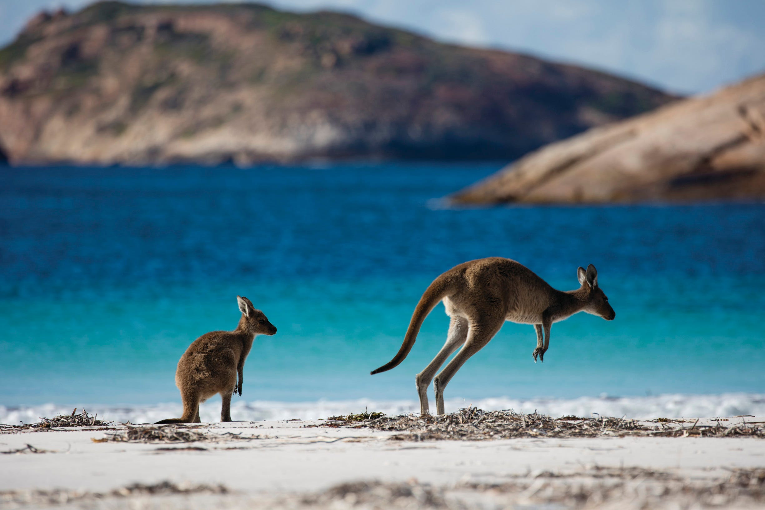 See remote Western Australia from afar with this photo tour