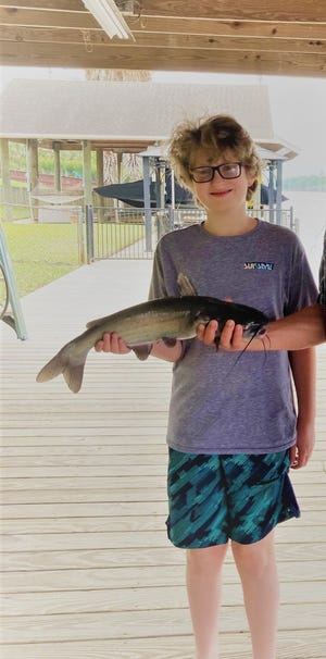 Two of my grandsons, Enoch and Eli with two of the many catfish we caught fishing on our pier using cut shad for bait.