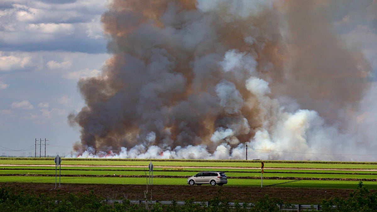 Editorial: Governor, veto this shield for sugarcane burning 1