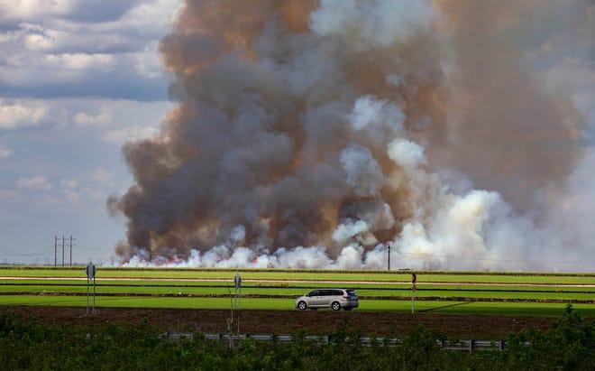 Sugar cane burns in preparation for harvesting along SR 80 near 20-mile bend, Tuesday, March 24, 2020. [ALLEN EYESTONE/palmbeachpost.com]
