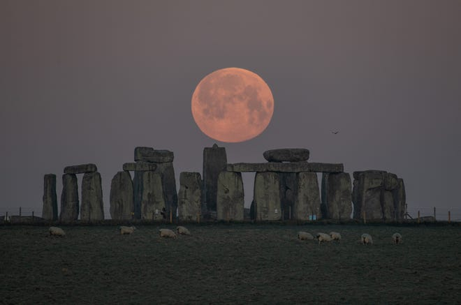 Stonehenge's vertical stones measure as high as are up to 30 feet high and weigh up to 25 tons each.