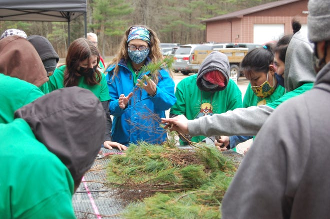 Christine Fossen-Rades, environmental science teacher at Menominee Indian High School, preps white pine tree seedlings with students before planting.