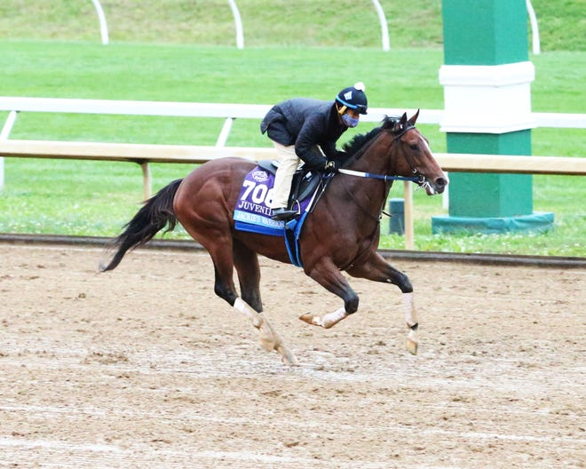 Jackie's Warriors, trained by Steven M. Asmussen, runs at Keeneland on October 30, 2020.