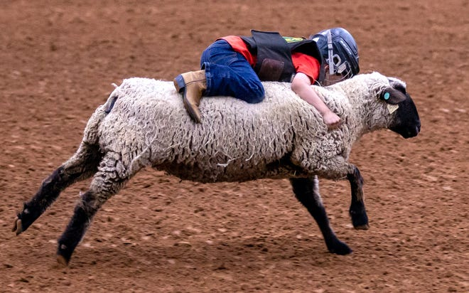 Glen Rose's Cal Carter, 6, hangs on for dear life during the mutton busting competition at the Somervell County Rodeo on Saturday night at the Somervell County Expo Center. Carter, who was the first of more than 20 riders, won the competition. The two-day rodeo drew participants and spectators from all around the state and throughout the United States. More than $30,000 in prize money was awarded.
