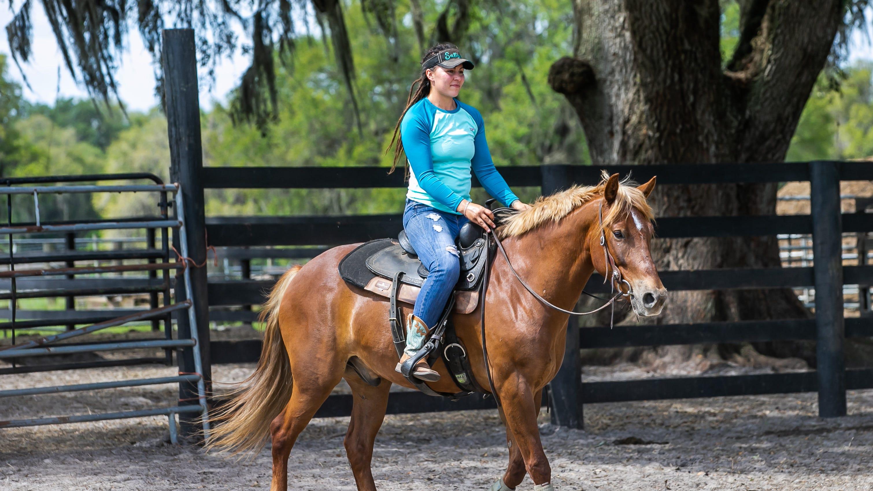 L'entraîneur de chevaux Kelby Farnsworth du Wild Horse Rescue Center à Webster promène Buck, un mustang de 5 ans, dans l'enclos rond le 28 avril.  Le département de police de Miami recherche Buck pour une utilisation possible dans le contrôle des foules.