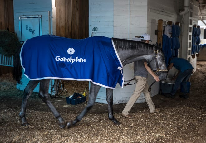 Kentucky Derby favorite Essential Quality walks around the barn following a morning workout at Churchill Downs. April 29, 2021