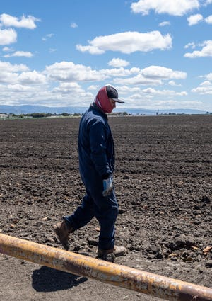 A farmworker walks over a dirt field early morning in Salinas Calif., on Monday, April 26, 2021.