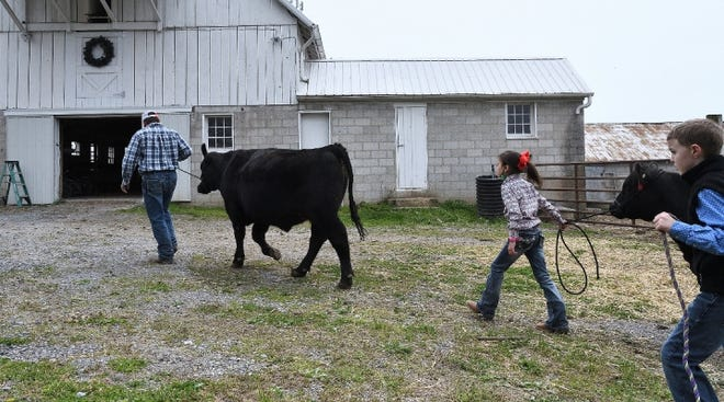 Under this proposal, estimates indicate more than 98% of farm estates will not owe any tax at transfer, provided the farm stays in the family. The tax the remaining less than 2% would owe, would be on their non-farm assets.