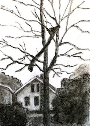This charcoal sketch by artist Laila Kujala of Milan shows a piece of insulation from the exploded house that flew into a nearby tree in 1972.  Based on a newspaper photo.