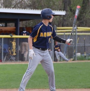 Brennan Carlson, shown in a game last year, had a big hit late as Aquin scored four runs in the last two innings Wednesday to beat Eastland 8-2 in a Class 1A sectional baseball semifinal. The Bulldogs will play at Sterling Newman on Friday trying to win their third sectional title since 2016.