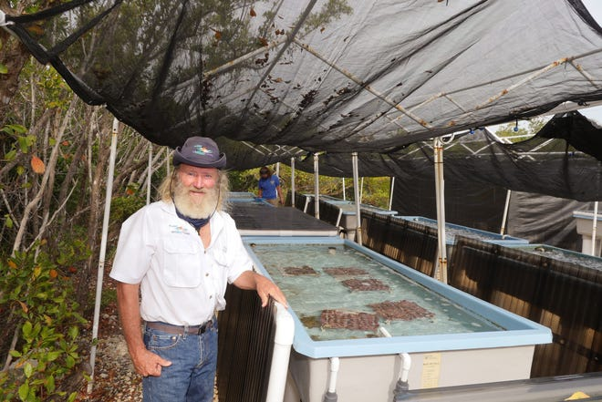 Dr. David Vaughan, founder of the Plant a Million Corals Foundation, poses in front of one of the coral nursery raceways at the Boy Scouts of America Florida National High Adventure Sea Base on Summerland Key, as Megan Gardner, a STEM Mate with the program, monitors the water quality in the nursery.