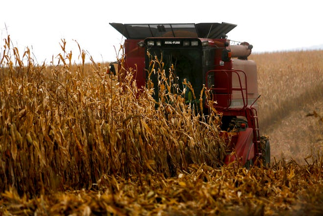 In this Dec. 4, 2017, file photo, a farmer harvests crops near Sinsinawa Mound in Wisconsin. A group of Midwestern farmers sued the federal government Thursday, April 29, 2021, alleging they can't participate in a COVID-19 loan forgiveness program because they're white. The group of plaintiffs includes farmers from Wisconsin, Minnesota, South Dakota and Ohio. According to the lawsuit, the Biden administration's COVID-19 stimulus plan provides $4 billion to forgive loans for socially disadvantaged farmers and ranchers who are Black, American Indian, Hispanic, Alaskan native, Asian American or Pacific Islander.