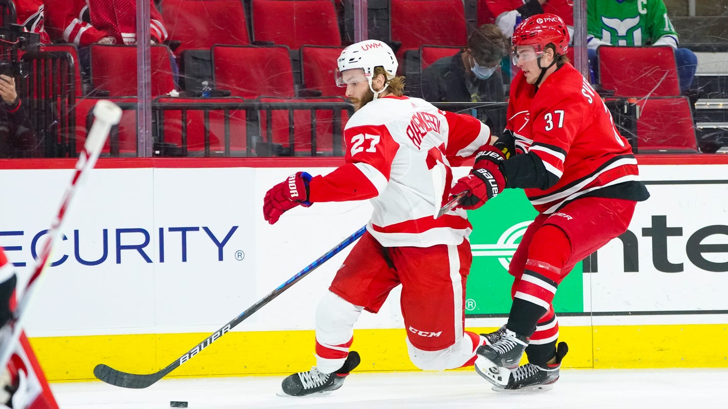 Detroit Red Wings approach final weekend with gratitude. Here's why