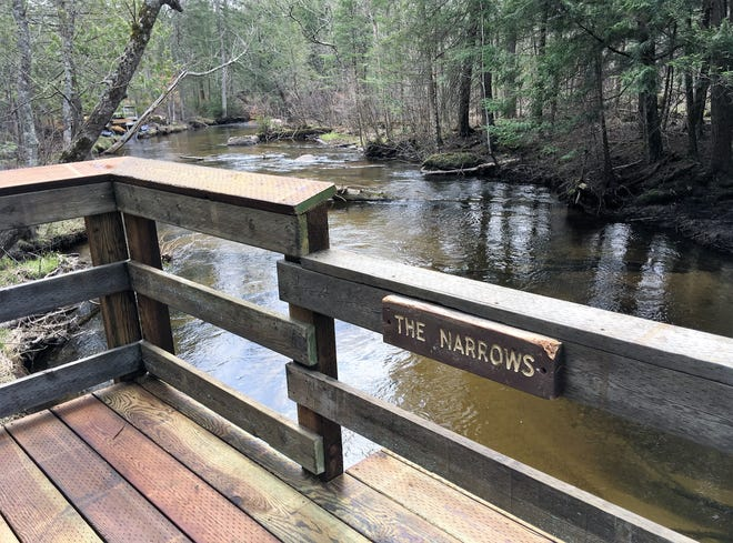 A view of the South Branch Oconto River from a pier on the newly restored fishing trail and boardwalk in the Chequamegon-Nicolet National Forest.