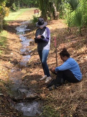 Two Florida Gulf Coast University students test for fecal indicator bacteria in water sources leading to the Estero River in 2019.