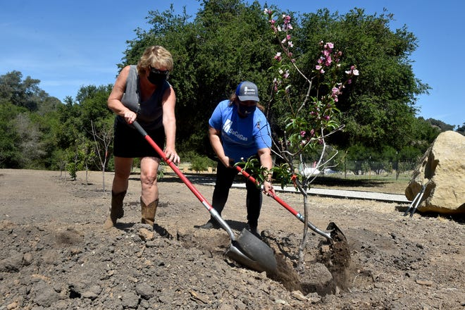 Tammie Helmuth, left, CEO of Girl Scouts of California's Central Coast, and Maria Ventura, of the Southern California Gas Company, plant a fruit tree at the Arnaz Program Center in Ventura on Friday, April 30, 2021. The utility company donated 30 trees to the center, which lies between Casitas Springs and Oak View. The property hosts the Girl Scouts, community organizations and other youth-serving nonprofits.