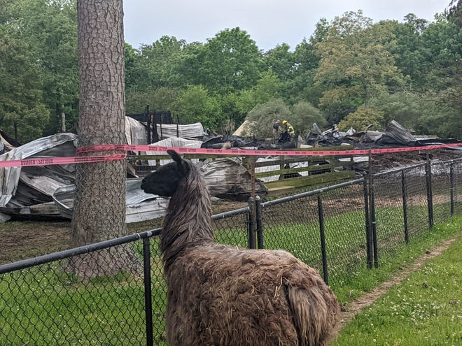 Noccalula Falls Park is closed today after a fire this morning destroyed the barn at the petting zoo area of the park.