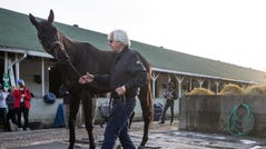 Bob Baffert brings Kentucky Derby winner Medina Spirit out for fans to see on the morning after the race. Medina Spirit is Baffert's seventh Kentucky Derby winner. May 2, 2021