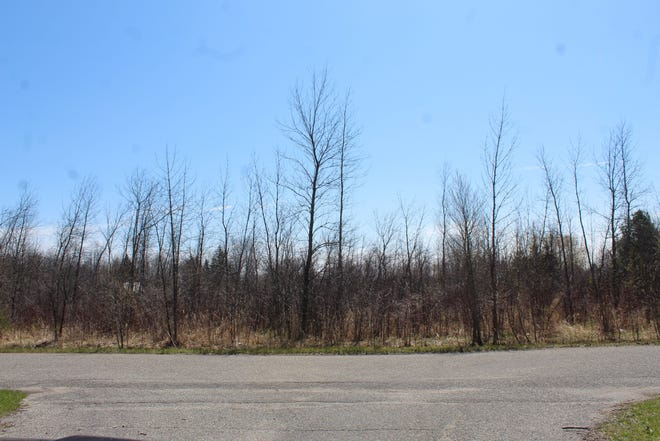 The Cheboygan City Council approved the vacation of an undeveloped portion of Second Street, on the city's east side near Duncan Avenue, between North F Street and Piret Street.