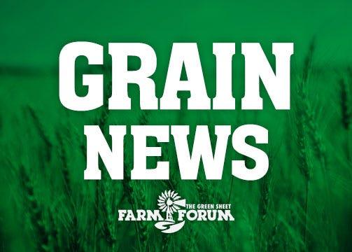Grain News