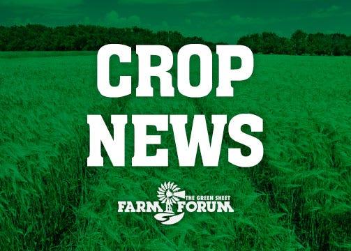 Crop News