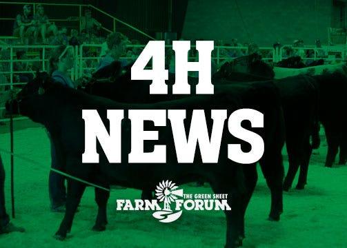 4H News