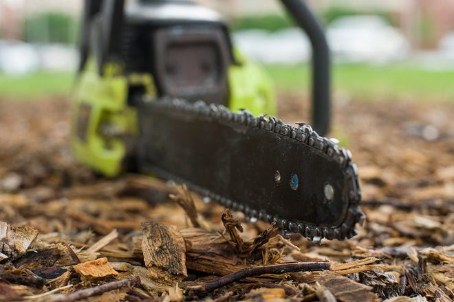 Following procedures will allow people with tree and limb damage to get their property back to normal in a safe manner.