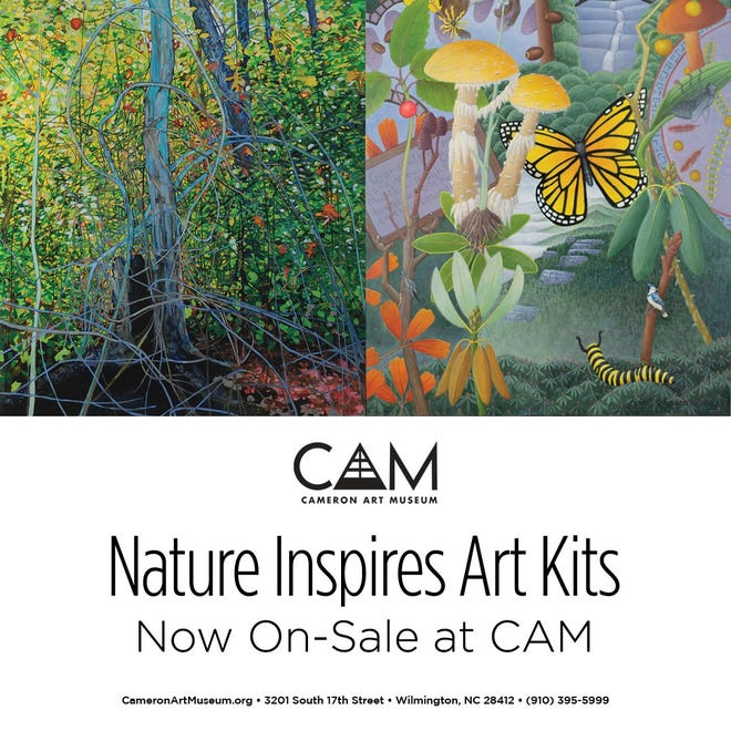 Nature inspires art kit for children on sale at Cameron Art Museum.