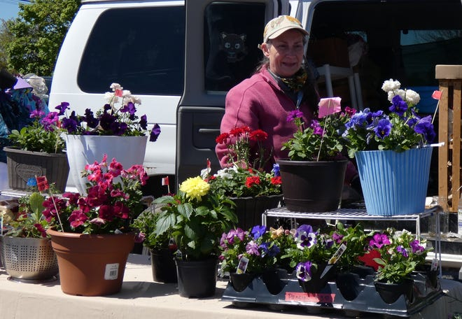 Wendy Lowe stands behind her display of potted flowers at the first Bucyrus Farmers Market of the season on Saturday.
