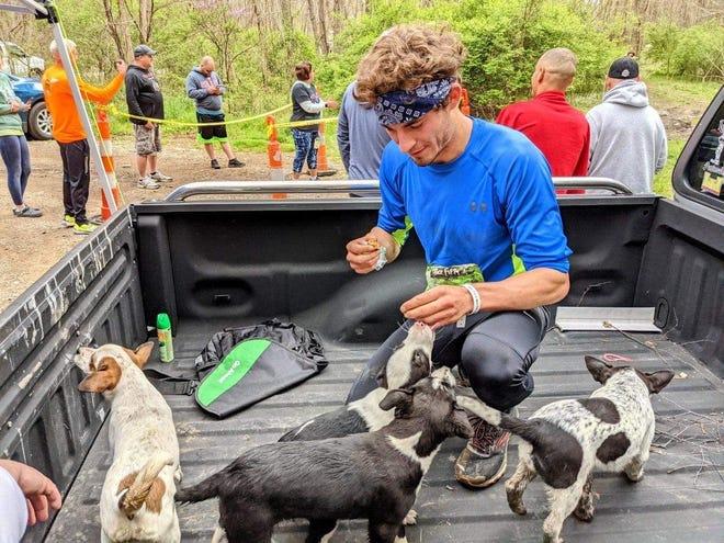 Pickerington teacher Adam Salberg was followed by a group of four puppies for three miles when he ran leg 24 of the Buck Fifty marathon.