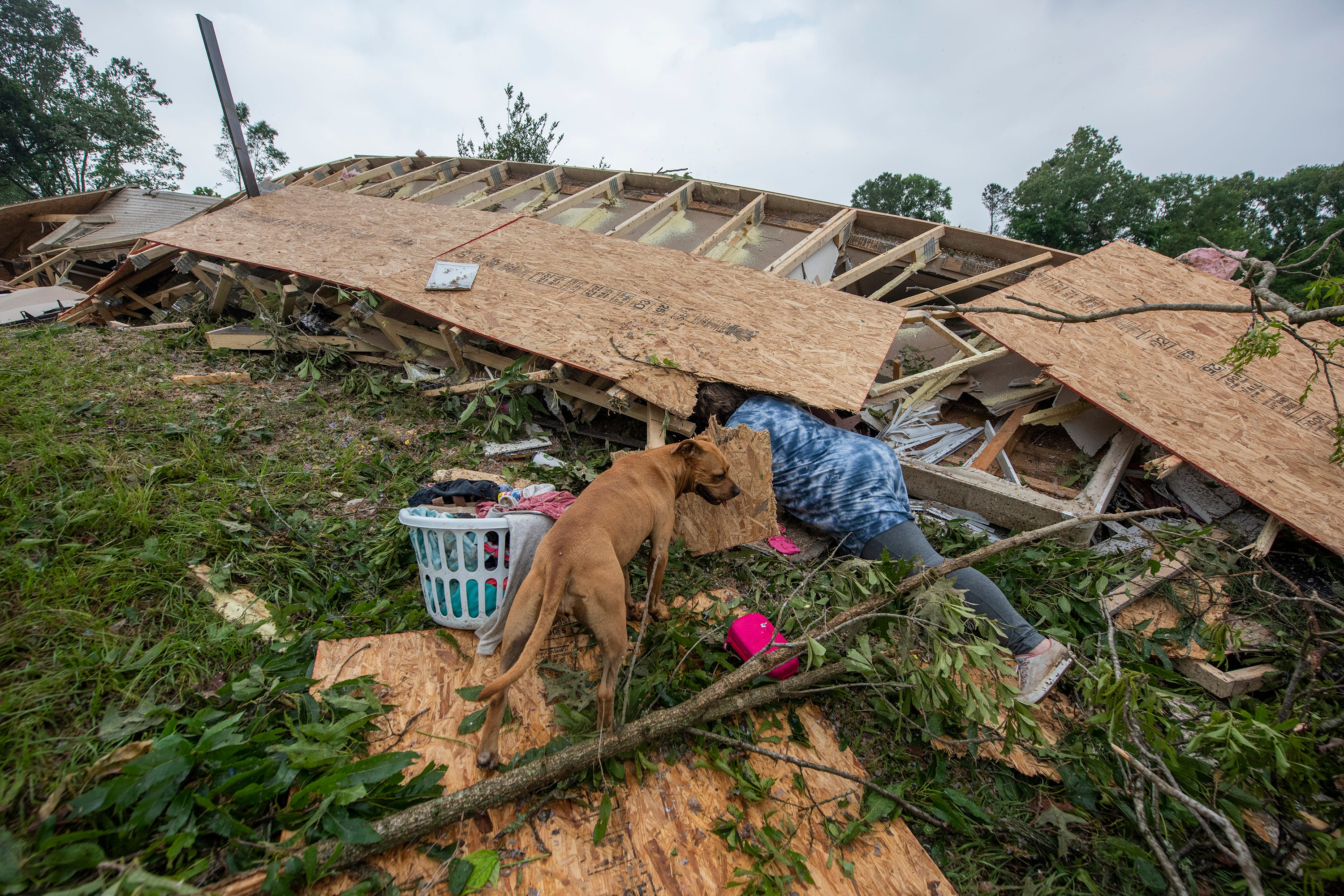 I saw trees flying : More than 100M people from New Mexico to Delaware at risk of severe weather, including tornadoes; 1 dead