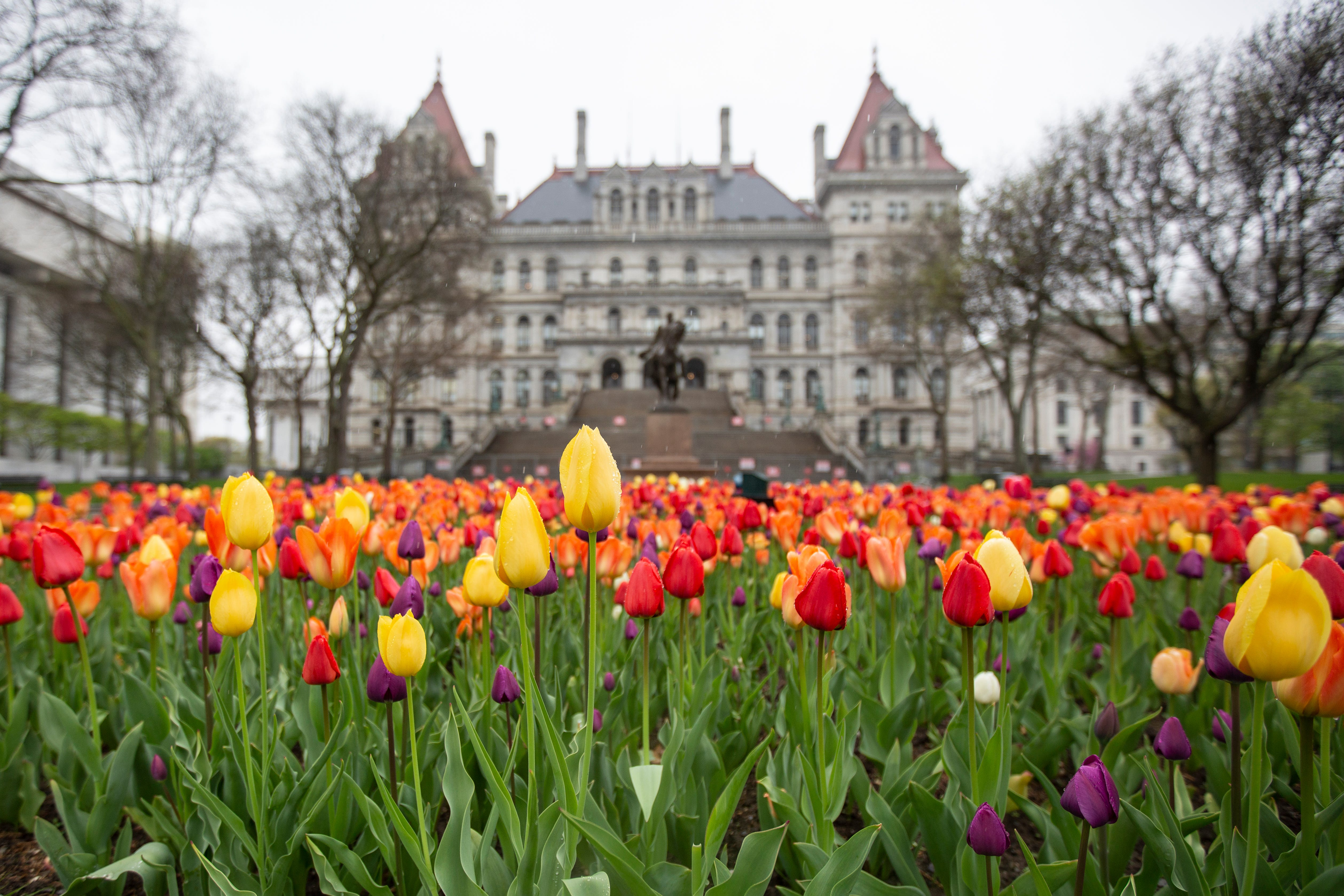 The New York State Capitol Building in Albany on Thursday, April 29, 2021. Even with the federal stimulus money, state lawmakers are raising taxes on the rich.