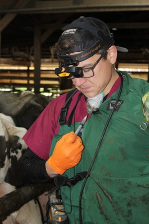 Growing up on the family dairy farm near Sheboygan, Wis., Nick Mayer says his love for cows and veterinary medicine started at a young age while watching their farm vet work on sick cows. At Waupun Veterinary Service, Mayer is able to hone his role in calf and heifer health programs.