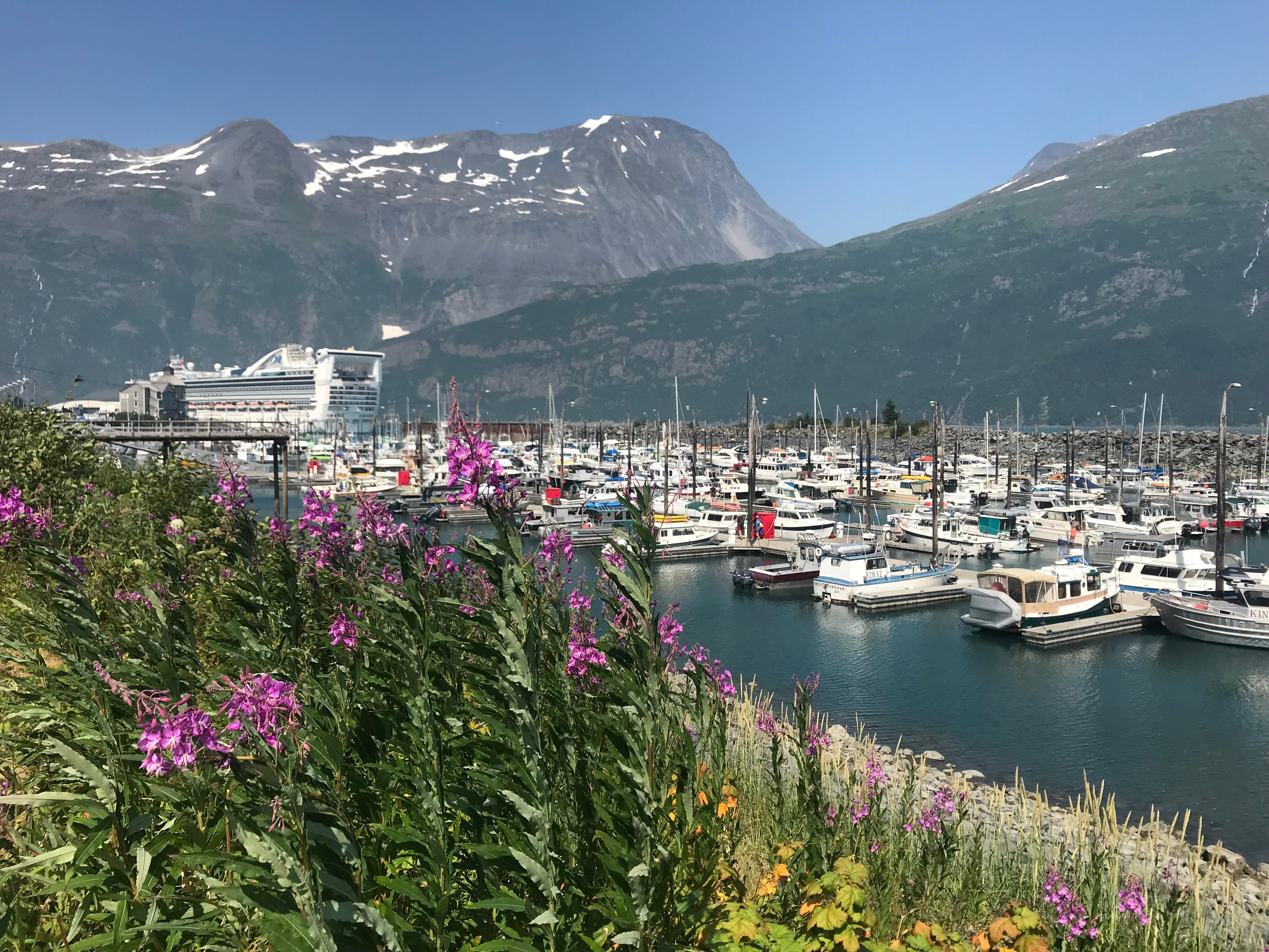 Tiny TikTok town: How almost everyone in Whittier, Alaska lives under one roof