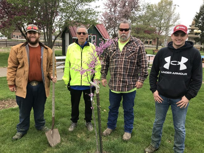 A Redbud tree was planted Friday in Veterans Park downtown Galva in observance of Arbor Day.  Pictured from left is James Byrd, summer help; Mayor Rich Volkert, Richard Plummer, Supervisor; and Nathan Berry, summer help.