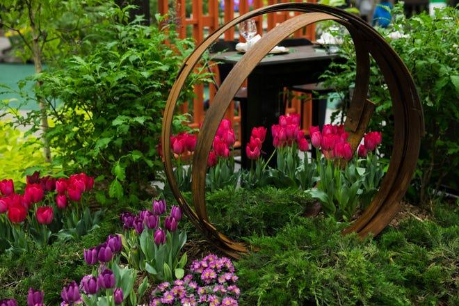 Tulips lend gorgeous color to a landscape.