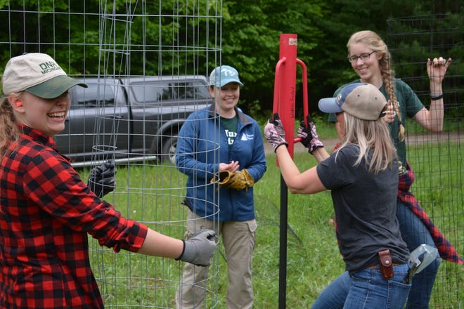 Huron Pines staff and AmeriCorps members plant native trees and shrubs to restore a former gas well-pad site and support wildlife habitat in the Pigeon River Country State Forest.