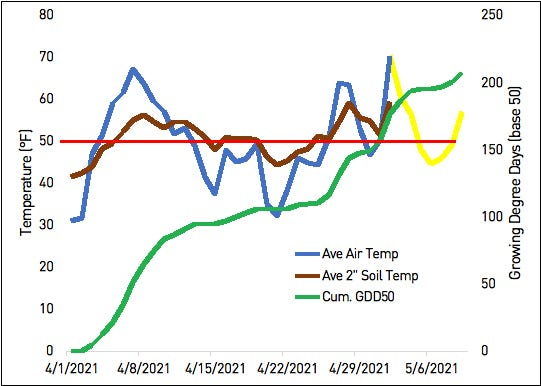Average air and 2-inch soil temperatures and accumulated growing-degree days (base 50) since April 1, as recorded at the Coldwater enviroweather station. The yellow line indicates predicted air temperatures for this week, and the red line highlights the standard minimum desirable soil temperature for planting.