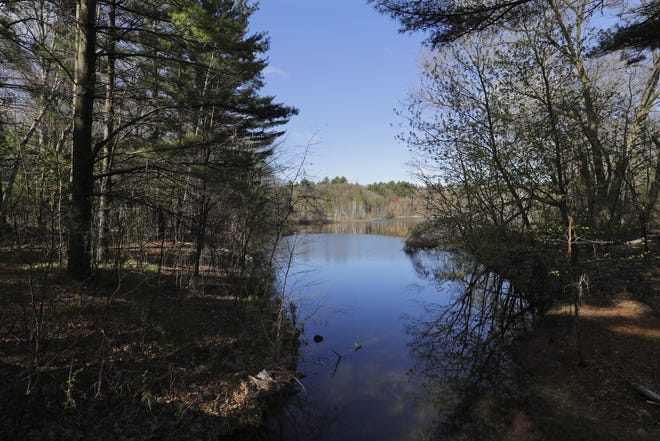 Skunk and Foster Lakes State Natural Area on Friday, April 30, 2021, in Waupaca County near Waupaca, Wis.