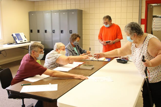 Voter turnout was described as light for the primary election Tuesday morning at the Woodville Township Fire Department  and EMS station in Woodville. The ballot featured a number of levies for voters to decide on across Sandusky County. Election results are online at thenews-messenger.com and in Thursday's print edition.