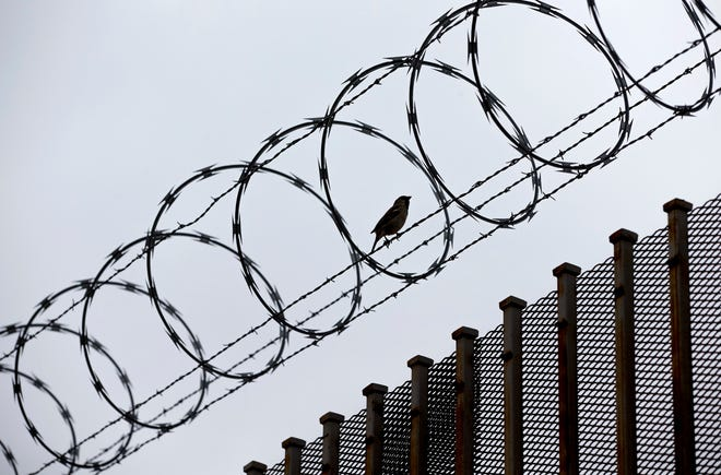 A bird rests on the barbed wire on the Hidalgo International Bridge in Hidalgo. [JAY JANNER/AMERICAN-STATESMAN/FILE]