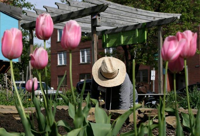 Randolph County's Extension Master Gardener program teaches new and lifelong gardeners ways to improve the community.