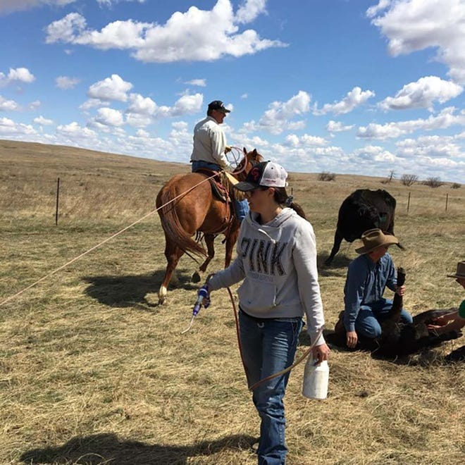 South Dakota Farmers Union calls on South Dakota farm and ranch families to participate in the 2021 growing season photo contest, Farm & Ranch Families of South Dakota. Running May 1-Dec. 1, all who enter become eligible to win $250. This photo was submitted for last year's contest.
