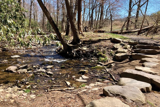 Enormous stepping stones provide a fun way to cross Forest Hills Run while hiking Woodland Trail.
