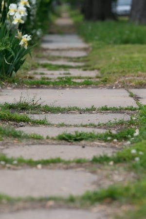 Grass and weeds begin to invade the cracks in the sidewalks off S.E. 4th St. and S.E. Liberty Street on Wednesday.