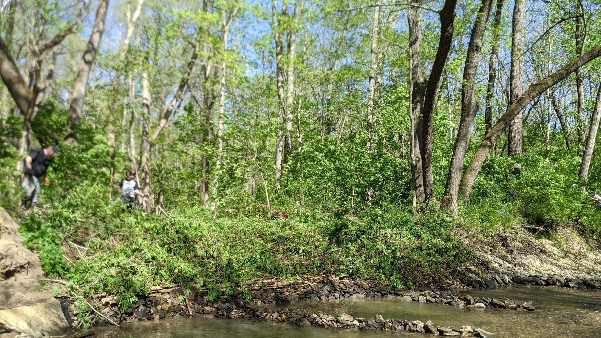 Boy Scout Troop 3 undertakes big Geode State Park project