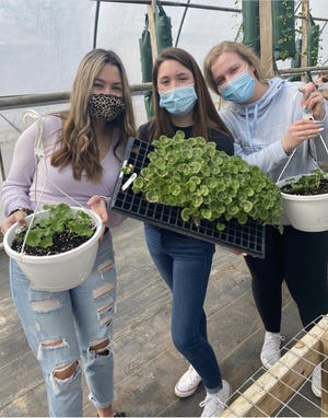 Emma Van Hove (from left), Karis Thomas and Macie Lee display flats and potted flowers that are for sale from a greenhouse behind Whiteford High School and managed by students in the Future Farmers of America chapter at the school.