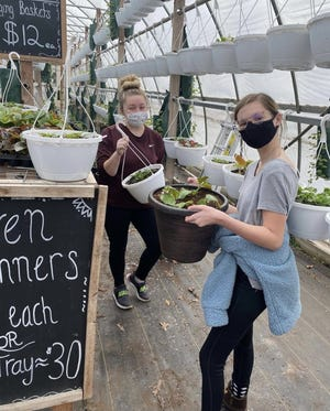 Morgan Olrich (left) and Leah Donnelly prepare potted flowers for selling at the Whiteford High School FFA greenhouse throughout the month of May.