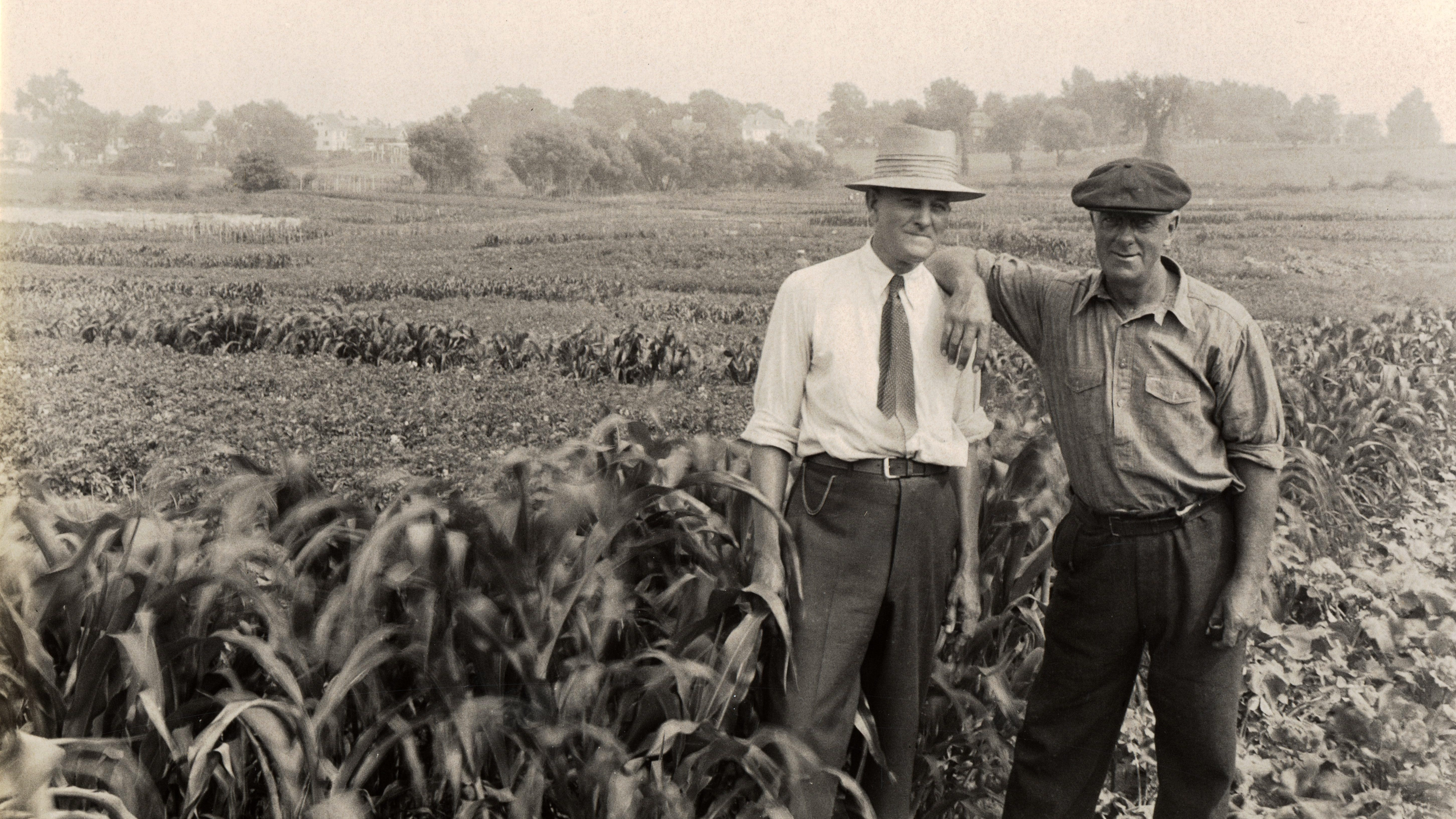 Two unidentified men stand amongst the subsistence garden off Thaxter Road on land loaned by the Portsmouth Building Association, c. 1935. The man in the white shirt at left also appears in a solo photograph [not featured], and he may be Raphael L. Costello, the supervisor for Portsmouth's subsistence gardens.