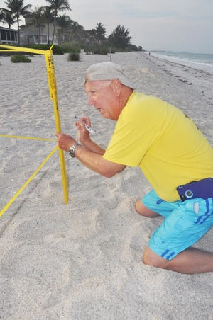Mike Watson, a volunteer with Turtle Time, marks the first nest of the season that was laid on Bonita Beach. Every nest is given a name. Watson named this nest Eve, after Eve Haverfield, the founder and president of Turtle Time.